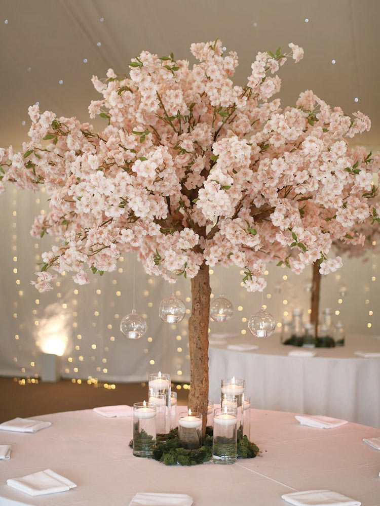 Pink-Blossom-Tree-1