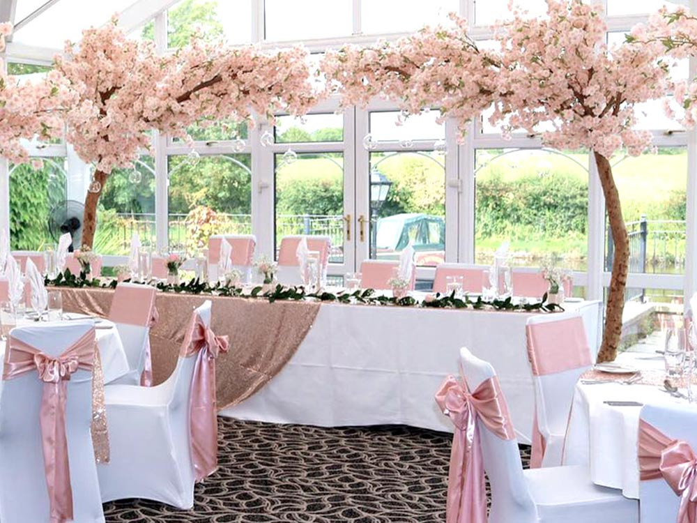 Pink-Canopy-Tree-3