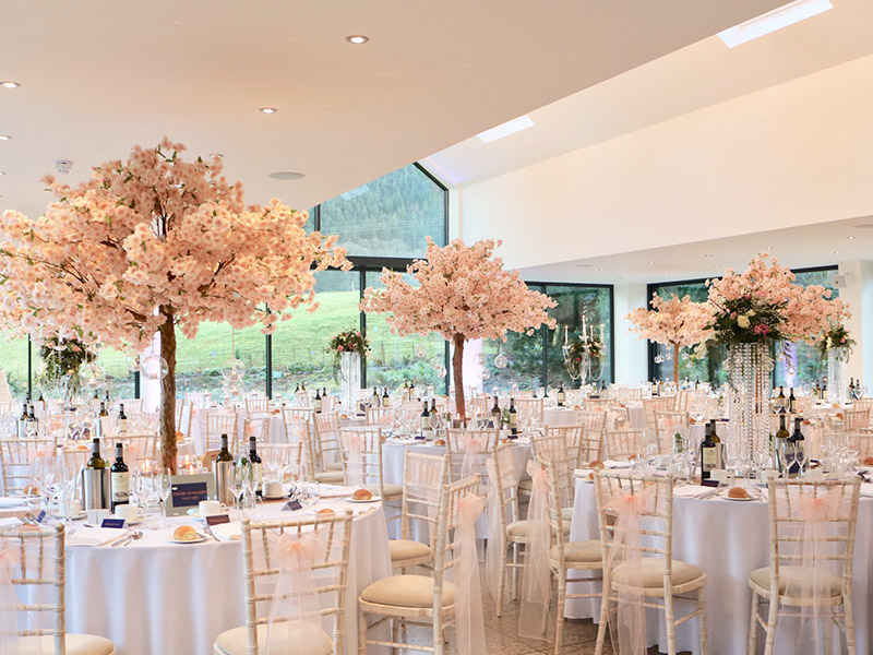 full-venue---tyn-dwr-hall---blossom-trees-pink