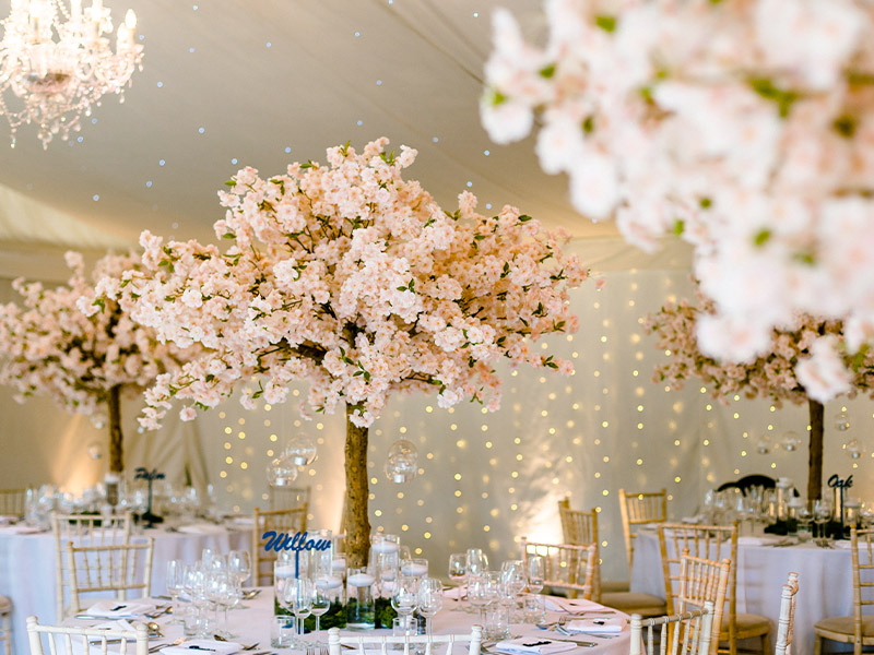 pink-blossom-trees---full-venue-willow